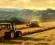 L'agroalimentare siciliano, una opportunità alla Sma MedFood di Sfax
