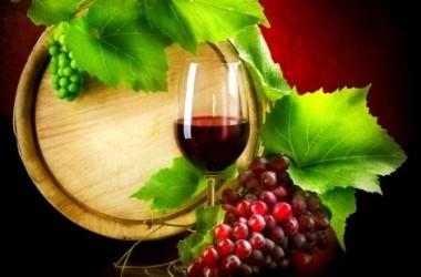 Sicilia -Tunisia: progetto Magon, enoturismo sulle vie del vino
