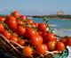 Le eccellenze di sei Comuni siciliani sbarcheranno a marzo in Cina