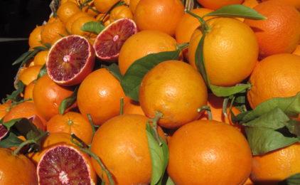 "La rete d'impresa ""People of Sicily"" spedisce i primi carichi di arance in Polonia"