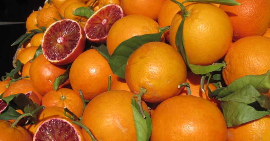Agrumi, primo export di arance rosse catanesi verso la Cina