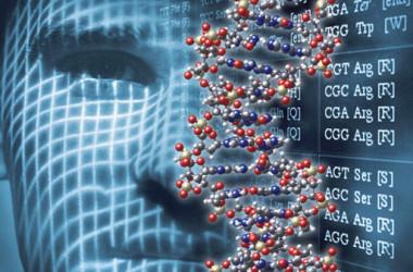 Nuovi Distretti tecnologici e Made in Italy: dal Cipe 10 mln di euro per la ricerca