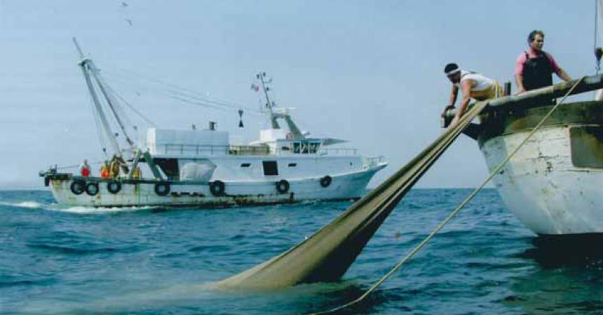 Pesca: prelievo ecosostenibile, Siracusa entra in progetto Ue