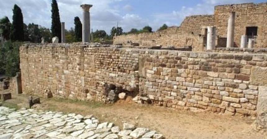 Sicilia -Tunisia: cantine e archeologia, sulle tracce dell'agronomo Magon