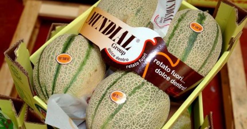 Meloni, accordo tra Alegra e il consorzio Mundial di Licata
