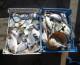 La Pesca in  Sicilia punta al rilancio del comparto con fondi Ue