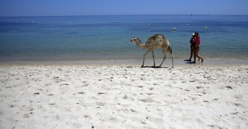 Turismo: sul portale Bikendive.com itinerari Sicilia-Tunisia