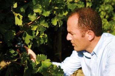 Antonio Rallo nuovo presidente di Unione Italiana Vini