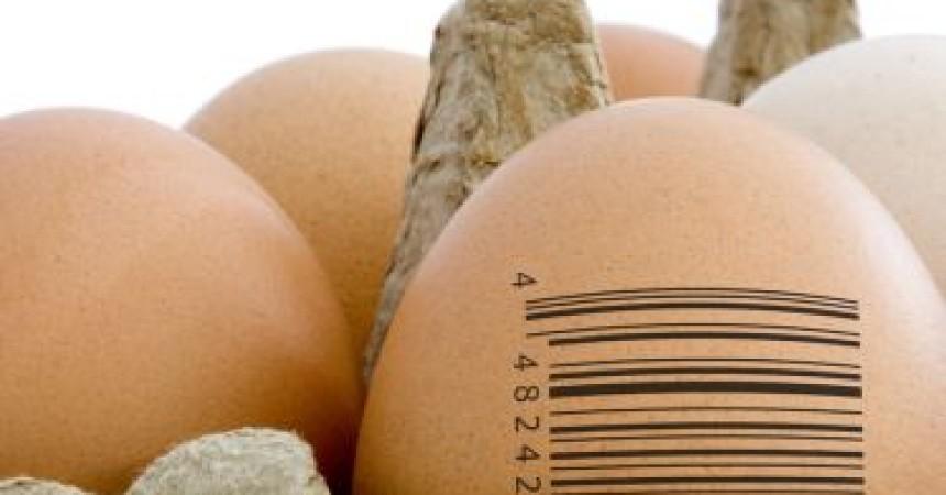 Ue approva l'etichettatura d'origine obbligatoria per i prodotti alimentari