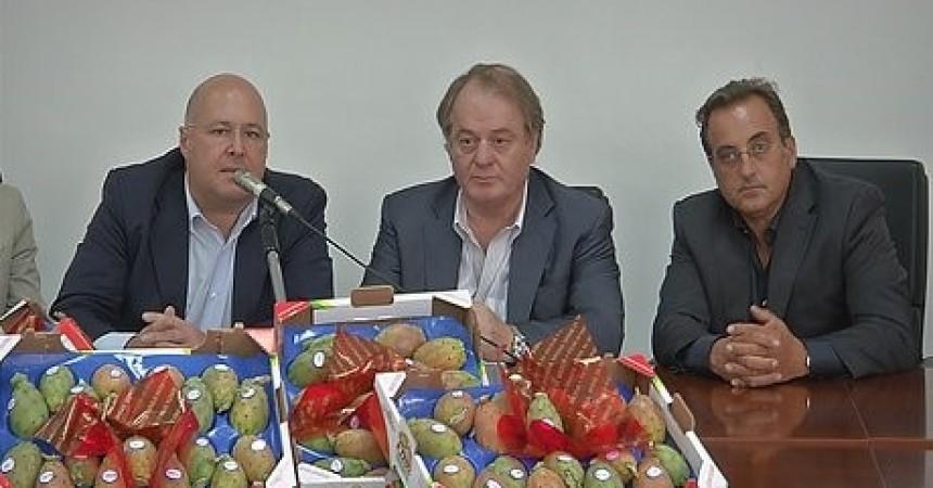 """In Sicilia prima filiera del fico d'India. Cracolici: """"Rafforzare capacità economica del comparto e l'export"""""""