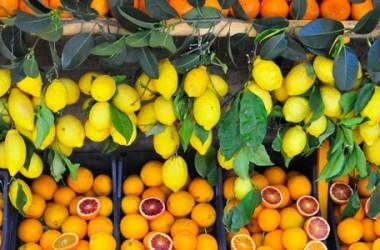 Export agroalimentare,  in Sicilia nasce la piattaforma Coloombus,