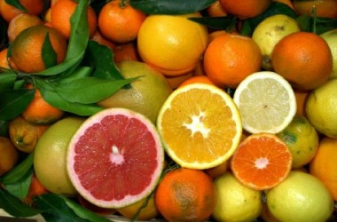 Agrumi, Ala: subito piano fitosanitario e stop import Sud Africa