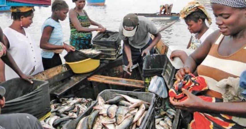 Missione del settore Pesca in Angola