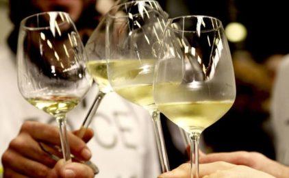 Le 430 Città del vino s'incontrano a Noto, cresce enoturismo