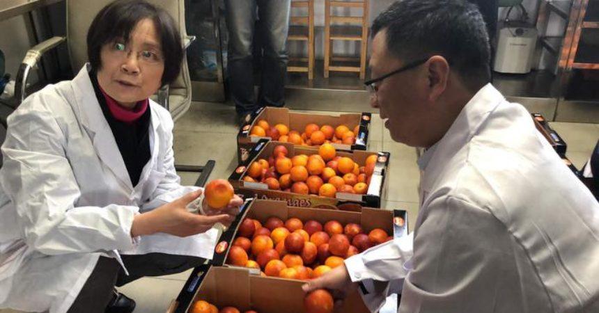 Alibaba porta arance rosse in Cina