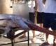 Pesce spada, Corte Ue boccia ricorso Italia