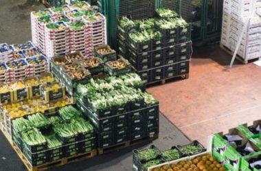 L'agroalimentare si conferma strategico per l'economia, bene l'export