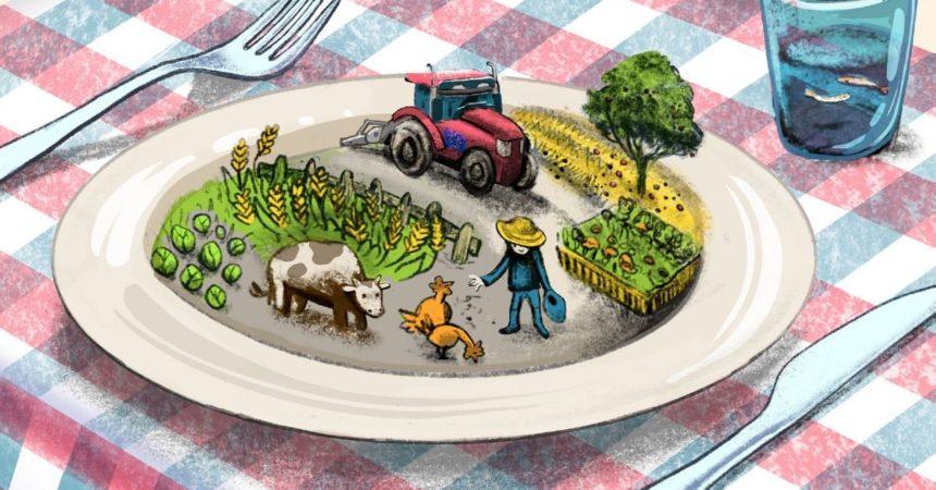 Nuovi bandi europei per la promozione di prodotti agroalimentari europei in un paese membro e all'estero