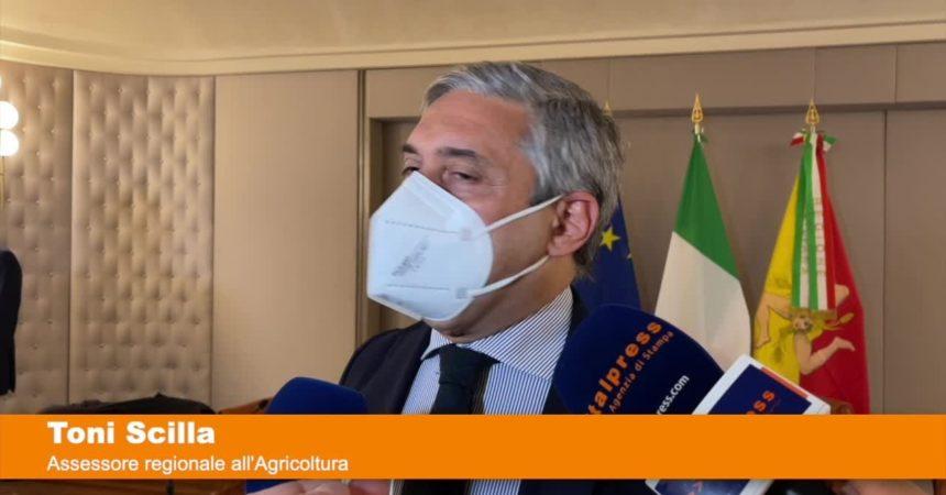 Quindici milioni per le aziende agricole siciliane