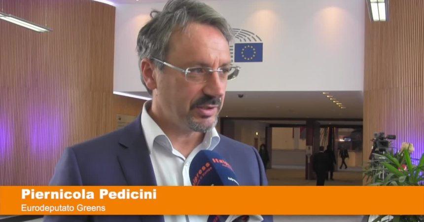 """Pedicini """"Presto un gruppo per il Sud Europa al Parlamento Ue"""""""
