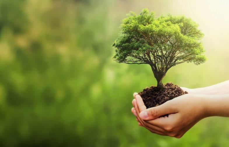 """Dal 14 al 16 luglio """"Catania 2030 – Green Expo del mediterraneo"""""""