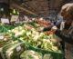 Ad agosto accelera l'inflazione, +2,1% su base annua