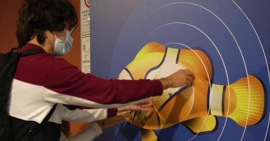 """IllusiOcean"", a Milano-Bicocca una mostra dedicata al mare"